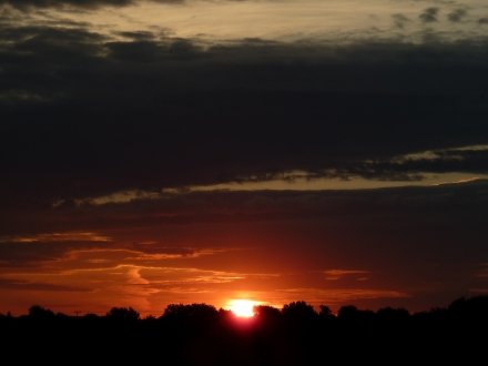TX Sunrise